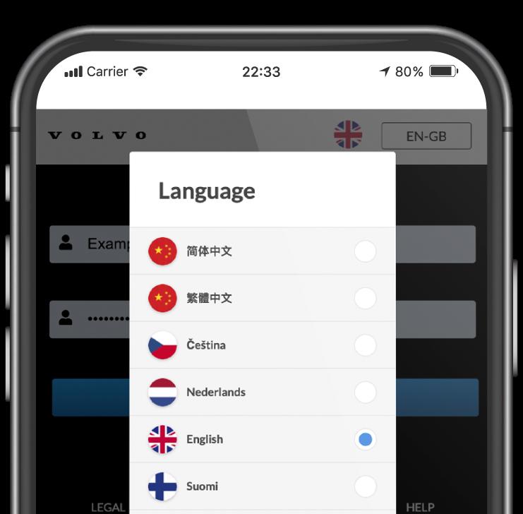 flat phone-language-01